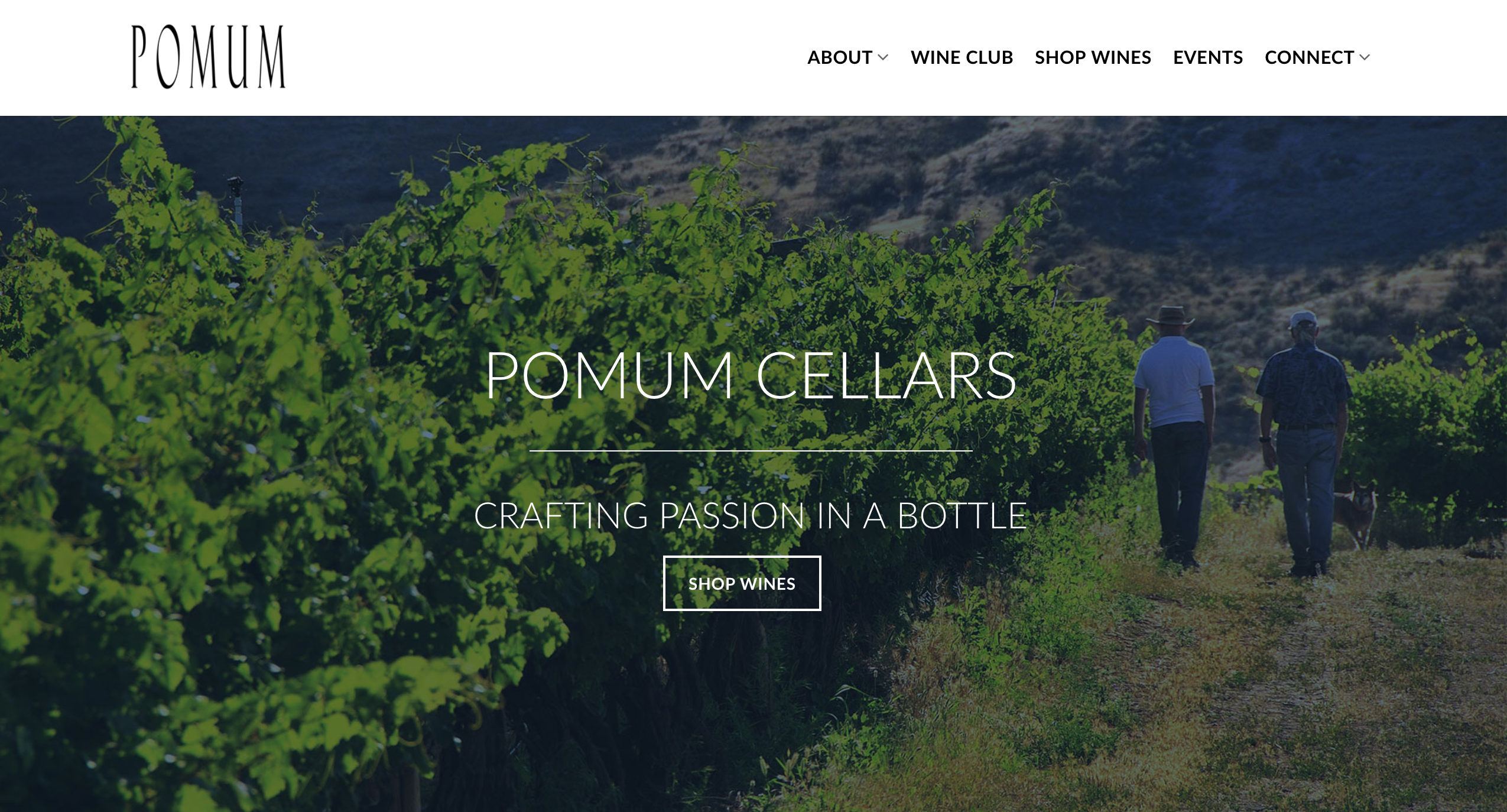 hillclimb-design-pomum-cellars